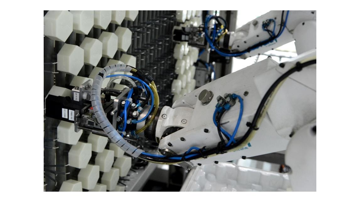 Logo ROVALDY Robots line for electroplating